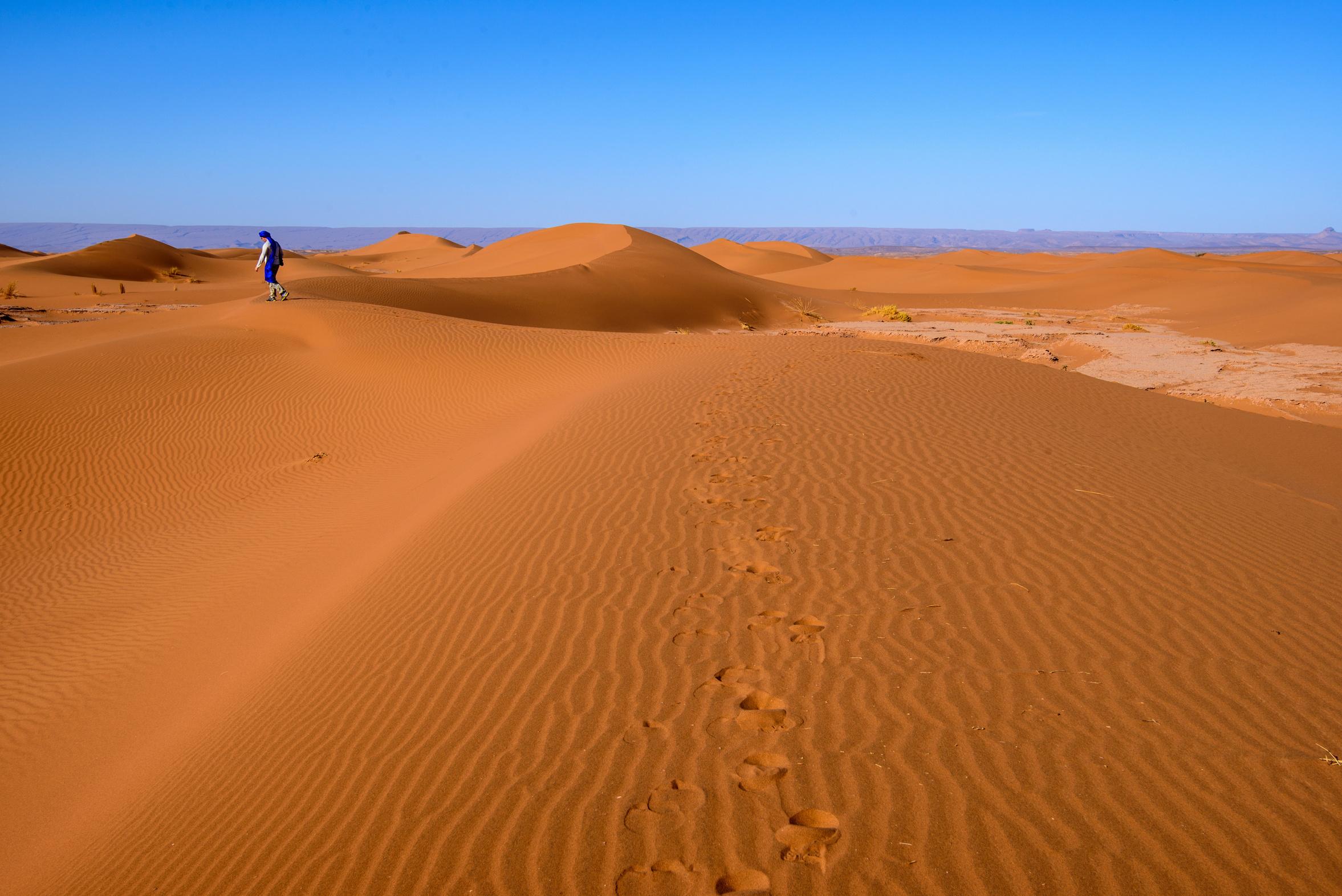 Dunes_du_Sahara